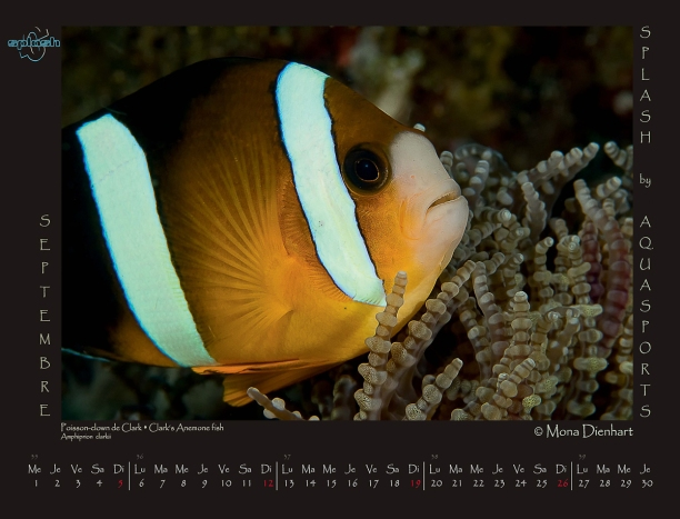 calendar20102_Page_10