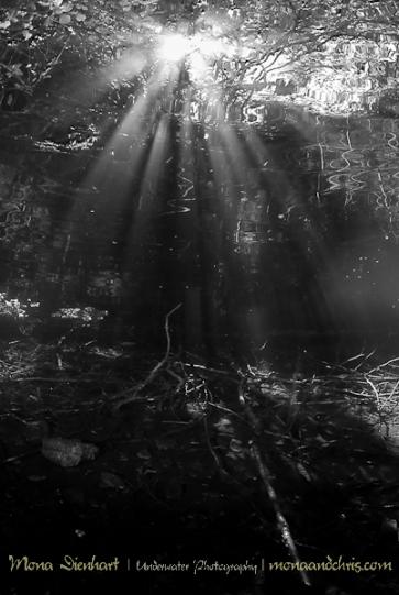 Sun beams In Fernsteinlake