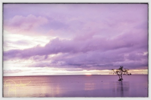 First impressions from Southern Leyte (2/2)