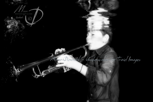 trompette-31