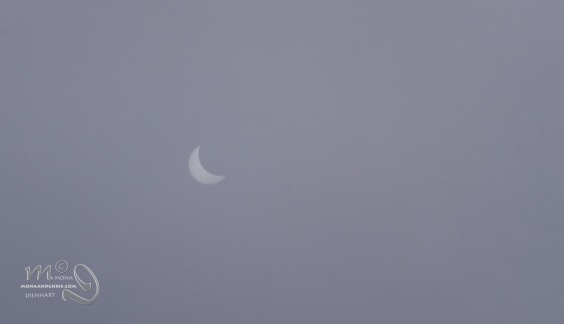 eclipse-8577