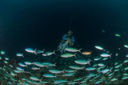 fishbowl-0017